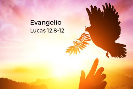 Lucas-128-12